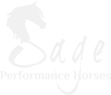 Sage Performance Horses in Texas